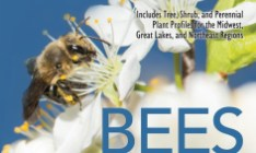 Honey Bees Bookcover